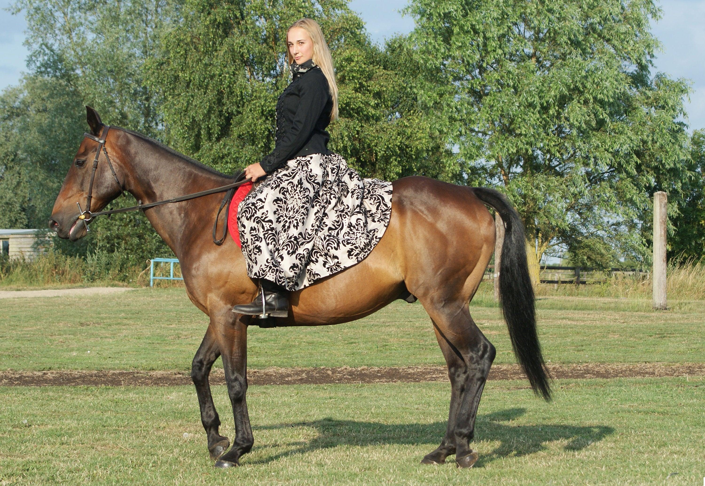 Hvordan tar man seg best ut på hesteryggen